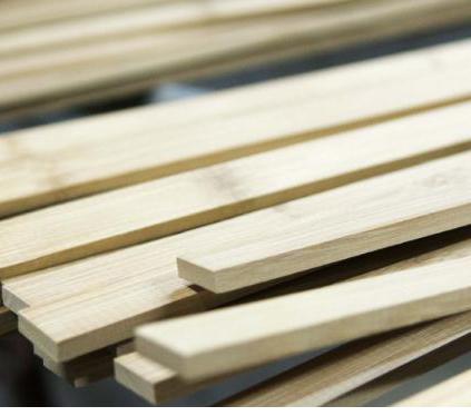 Bamboo Strip B